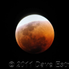 "Thumbnail image for An Auspicious Day: ""Love Your Blog"" Launches with Moon's Eclipse"