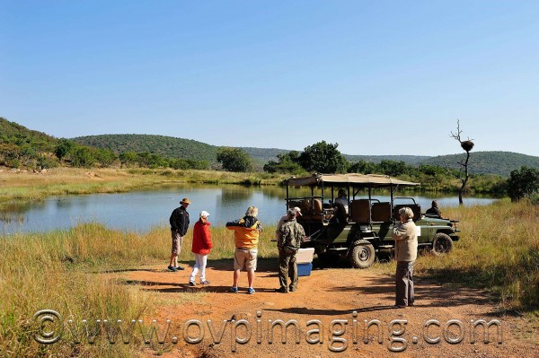 Drinks stop at a dam - Welgevonden Game Reserve, South Africa