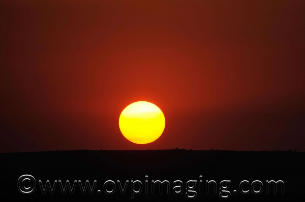 African sunset - Welgevonden Private Game Reserve, SA