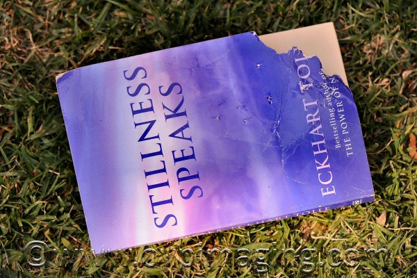 Eckhart Tolle's book, Stillness Speaks, after being chewed by a Golden Retriever puppy.